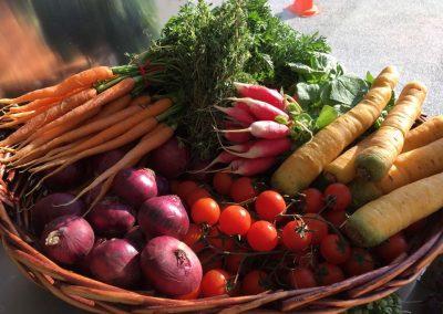 carottes-tomates-cours-cuisine
